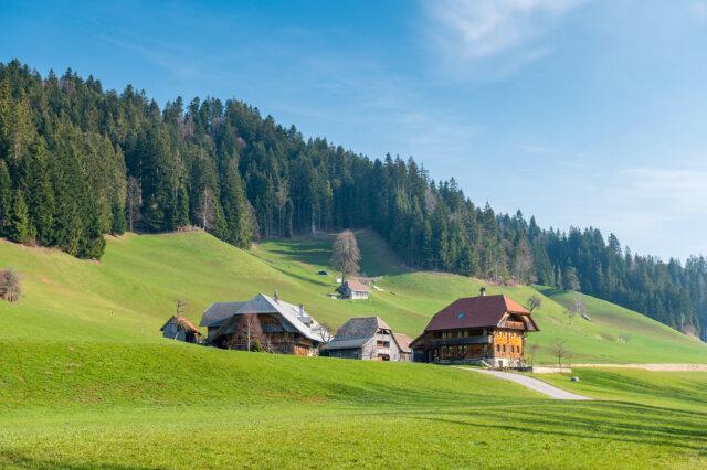 20190402 Trub Dorf Viehschau 0058
